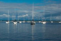 Plattsburgh City Marina