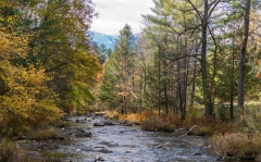 Putts Creek in Autumn