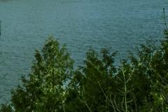 Putts Creek wma